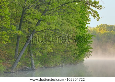 Foggy spring shoreline of Eagle Lake at sunrise, Fort Custer State Park, Michigan, USA - stock photo