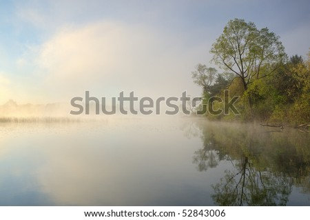 Foggy, spring shoreline of Whitford Lake, Fort Custer State Park, Michigan, USA - stock photo
