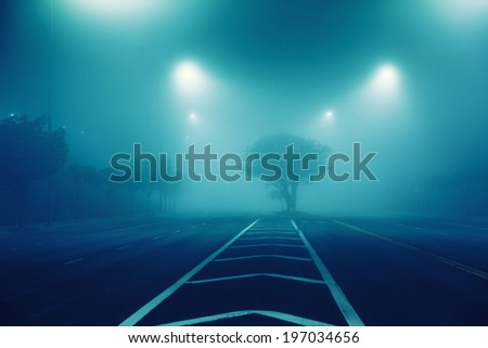 Foggy street road tree perspective at night - stock photo
