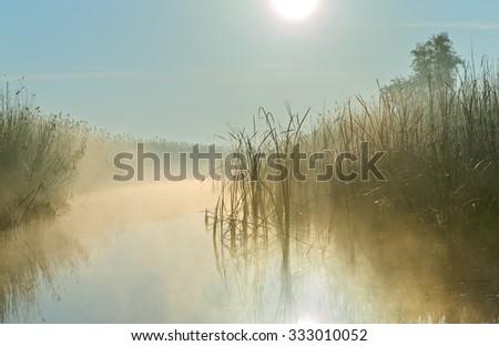 Foggy sunrise in the Delta of the Volga River, Russia - stock photo