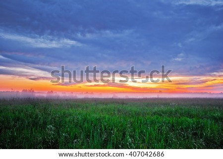 Foggy sunset in summer field.