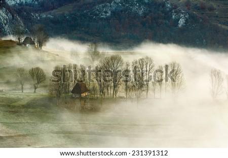 Foggy time - stock photo