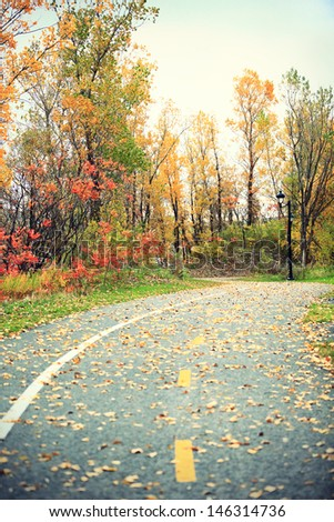 Foliage. Fall rural road with autumn leaves. Trees covered in colorful foliage. - stock photo