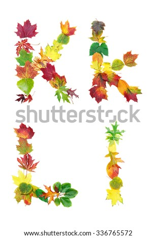 Font made of autumn leaves isolated on white. Letters k and l. - stock photo