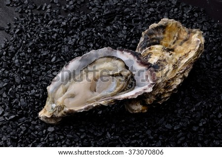 Food and Japanese food  Large-sized oyster on stone from Japan   - stock photo