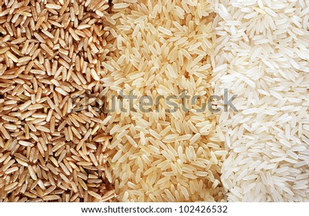 Food background with three rows of rice varieties : brown rice, mixed wild rice, white (jasmine) rice. - stock photo