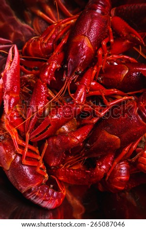Food. Delicious crayfish on the table - stock photo