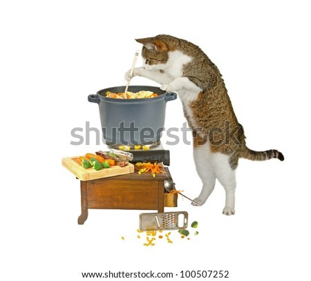 Food is nearly ready... - stock photo