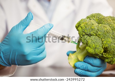 Food scientist injecting head of broccoli at the university - stock photo