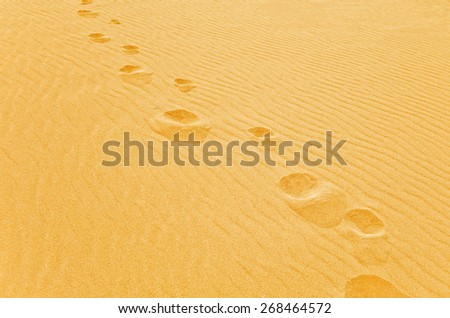 Foot step on the sand - stock photo