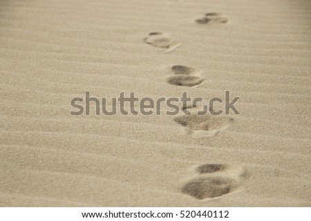 Foot steps in sand