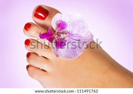foot with flower of orchid - stock photo