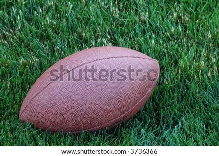 football on grass - stock photo