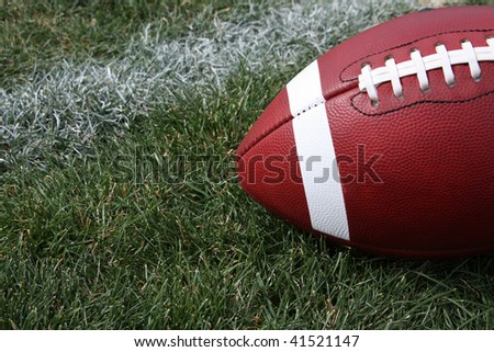 Football on the Grass - stock photo