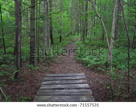 Footbridge along the Appalachian Trail - stock photo