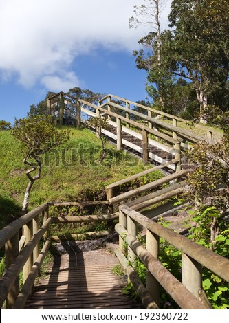 Footpath among tropical vegetation. Mauritius. - stock photo