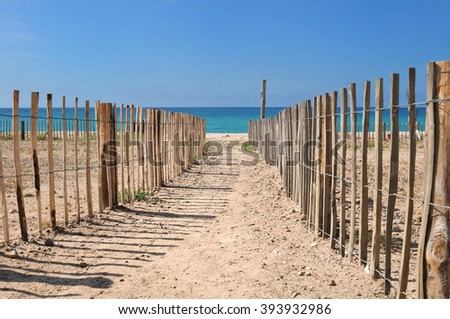 footpath between wooden fence leading on a beach
