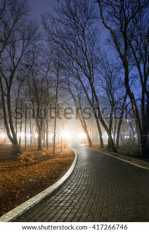 Footpath in a fabulous autumn city park at night in a fog