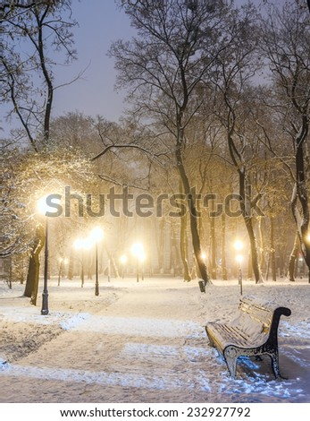 Footpath in a fabulous winter city park - stock photo