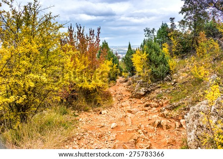 Footpath in Autumn View of the Krizevac (Cross) Mountain in Medjugorje in Bosnia ed Erzegovina: brownish trees, green weeds, orange and yellow leaves and grey rocks - stock photo