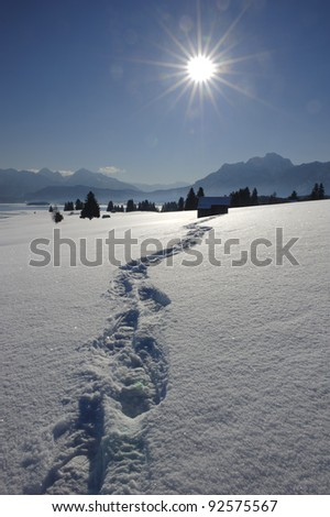 footpath in snow at alps in bavaria, germany - stock photo