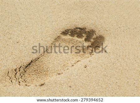 footprint on a sandy beach - stock photo