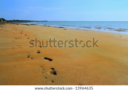 Footprints and pawprints on the beach, Darwin, Northern Territory, Australia