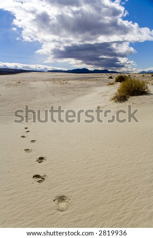 Footprints in a sand dune near Death Valley, California.