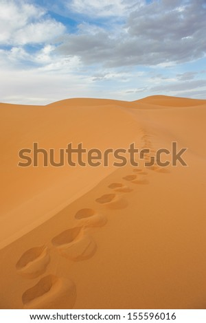 Footprints in sand dunes of Erg Chebbi, Morocco - stock photo