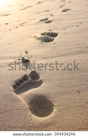 Footprints in sand on the beach