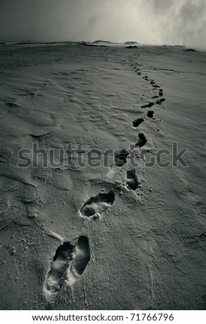 Footprints in Snow - stock photo