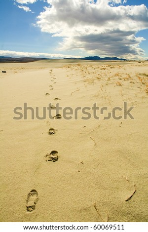 footprints in the sand leading across Death Valley - stock photo