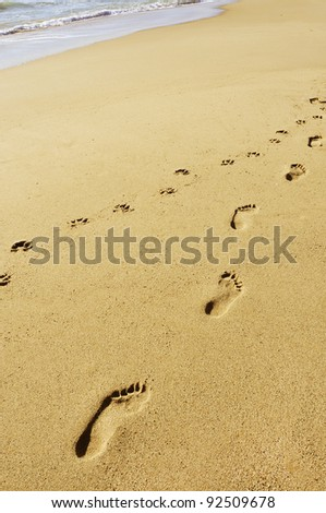 footprints in the sand of a beach