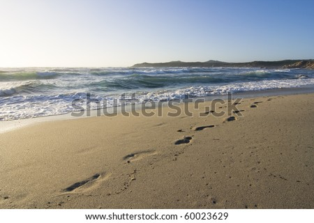 footprints of a person in the wet sand of a beach - stock photo