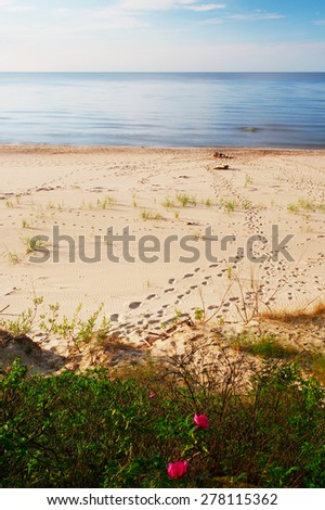 Footprints on a sunny, empty beach. Baltic sea shore, Pomerania, northern Poland. - stock photo