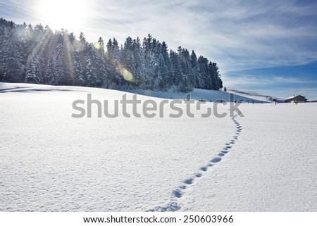 Footprints on snow, Tyrol, Austria - stock photo