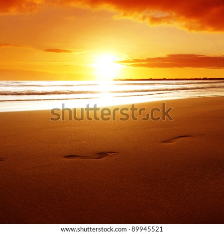 Footprints on the beach at sunset. - stock photo