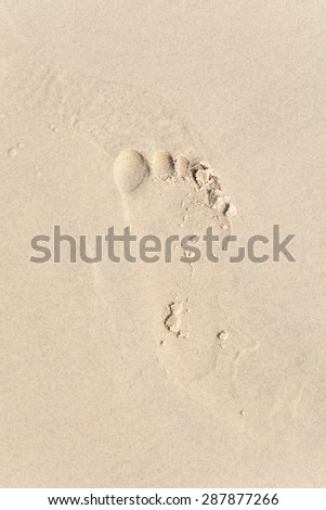 footprints on the beach  for background