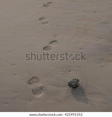 Footprints on the beach sand. - stock photo