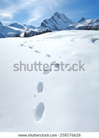 Footprints on the snow - stock photo