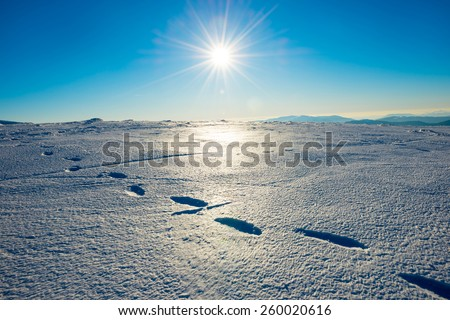 Footprints on the snow. Bright landscape with sun in winter mountains. - stock photo