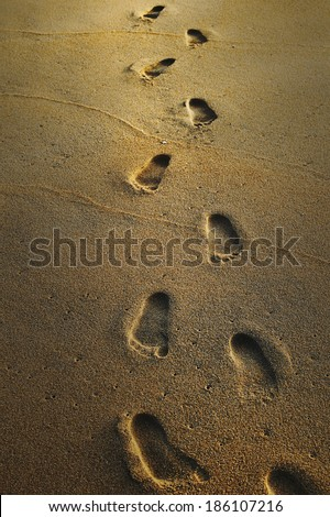 Footprints on the wet sand - stock photo