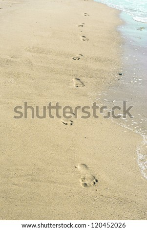 Footprints trail in wet sand of beach in sunny day