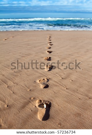 Footprints with feather in wet sand in a line towards the sea and breakers - stock photo