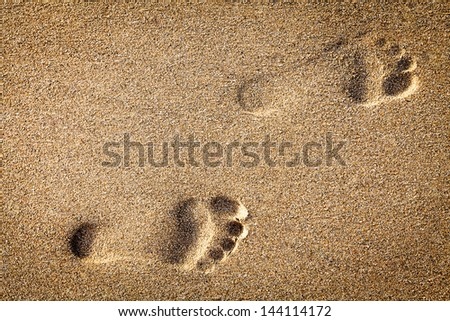 footsteps in sandy on the beach - stock photo