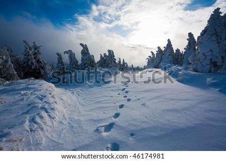 footsteps in snowbound landscape - stock photo