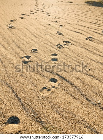 footsteps in the sand at dusk