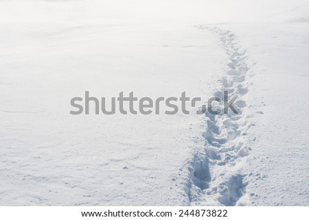Footsteps on the snow. - stock photo