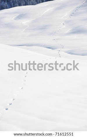 Footsteps on the snow. Braunwald, Swiss Alps - stock photo