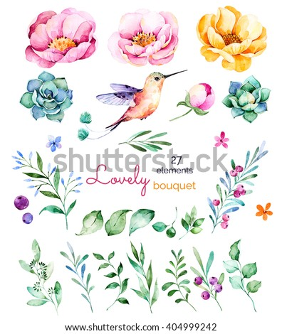 Foral collection with flowers,roses,leaves,branches,berries,succulents, hummingbird and more.Colorful floral collection with 27 watercolor elements.Set of floral elements.Lovely Bouquet collection - stock photo